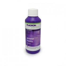 Plagron Power Root 100 ml