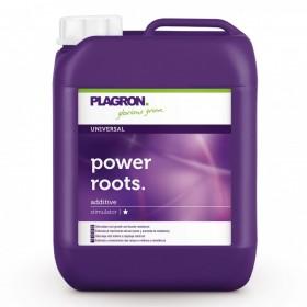 Plagron Power Root 5 Lt