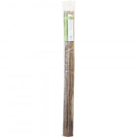 Bamboo 120 cm Pack de 25 pcs