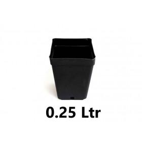 Pot Carré  0.25 ltr (7x7x8cm)
