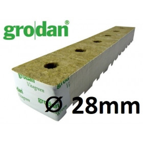 Cube Laine de Roche Grodan Startblock ⌀ 28mm  (x12pcs)