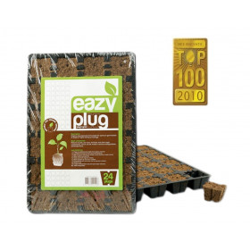 Eazy Plug 24pcs