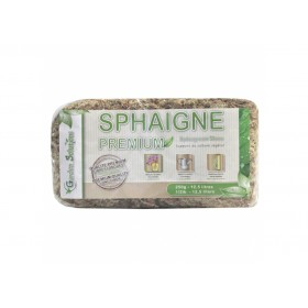 Sphaigne du Chili 250 gr Qualité Premium (Garden...
