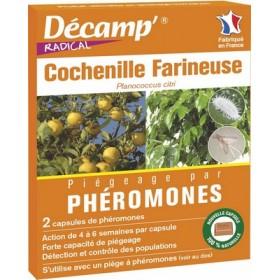 PHÉROMONE COCHENILLES FARINEUSE 2P.