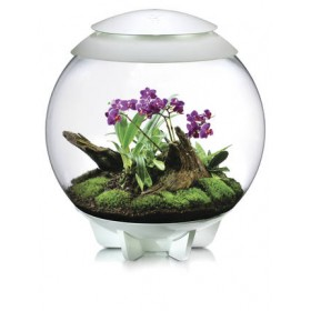 Terrarium biOrb Air 60 blanc