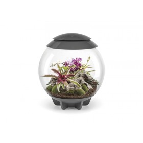 Terrarium biOrb Air 60 gris