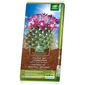 Terreau pour cactus Humuforte