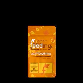 Powder Feeding Short Flowering 125gr