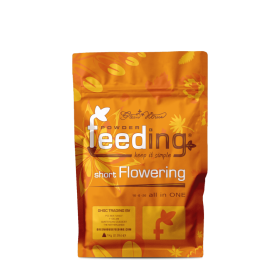Green House Seeds Co. Floraison courte Powder...