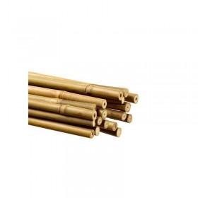 Tuteur en Bambou 120cm Ø 10/12mm